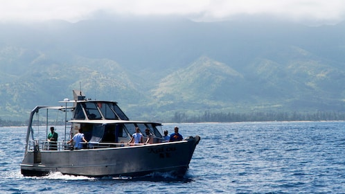Tour group on the North Shore Whale Watch in Oahu