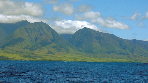 Landscape on Maui from Glassbottom boat