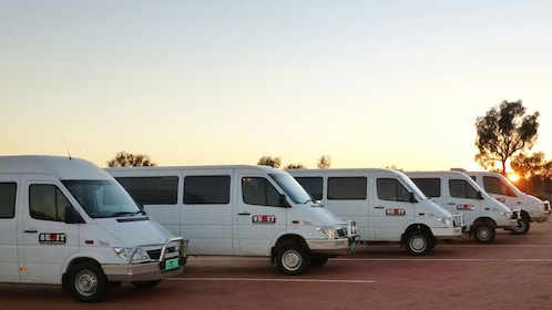 Fleet of tour vans parked as the sun rises at Uluru