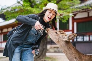 往嵐山、京都及奈良的巴士全日遊