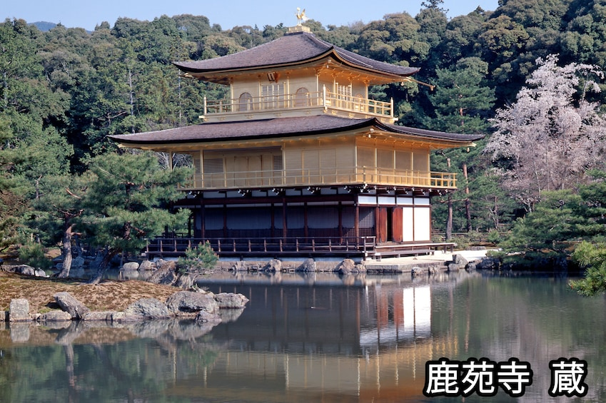 Show item 2 of 10. Full-Day Bus Tour to Kyoto, Nara & Kobe
