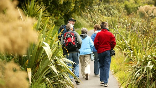 Group on a path through Zealandia