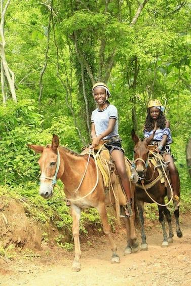 Cargar foto 2 de 7. Guided mules Ride or horse in the Sierra Madre