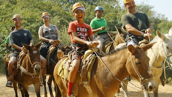 Guided mules Ride or horse in the Sierra Madre