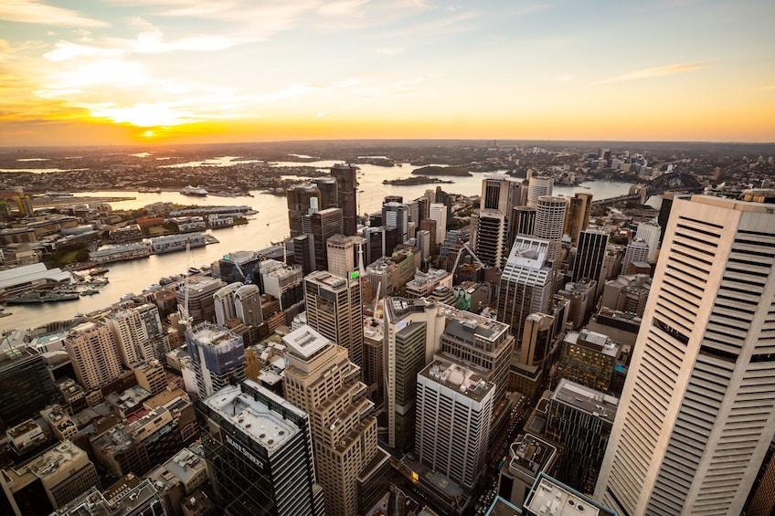 Show item 3 of 8. Sydney Tower Eye Tickets