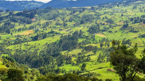 Landscape while traveling for tour in Medellin