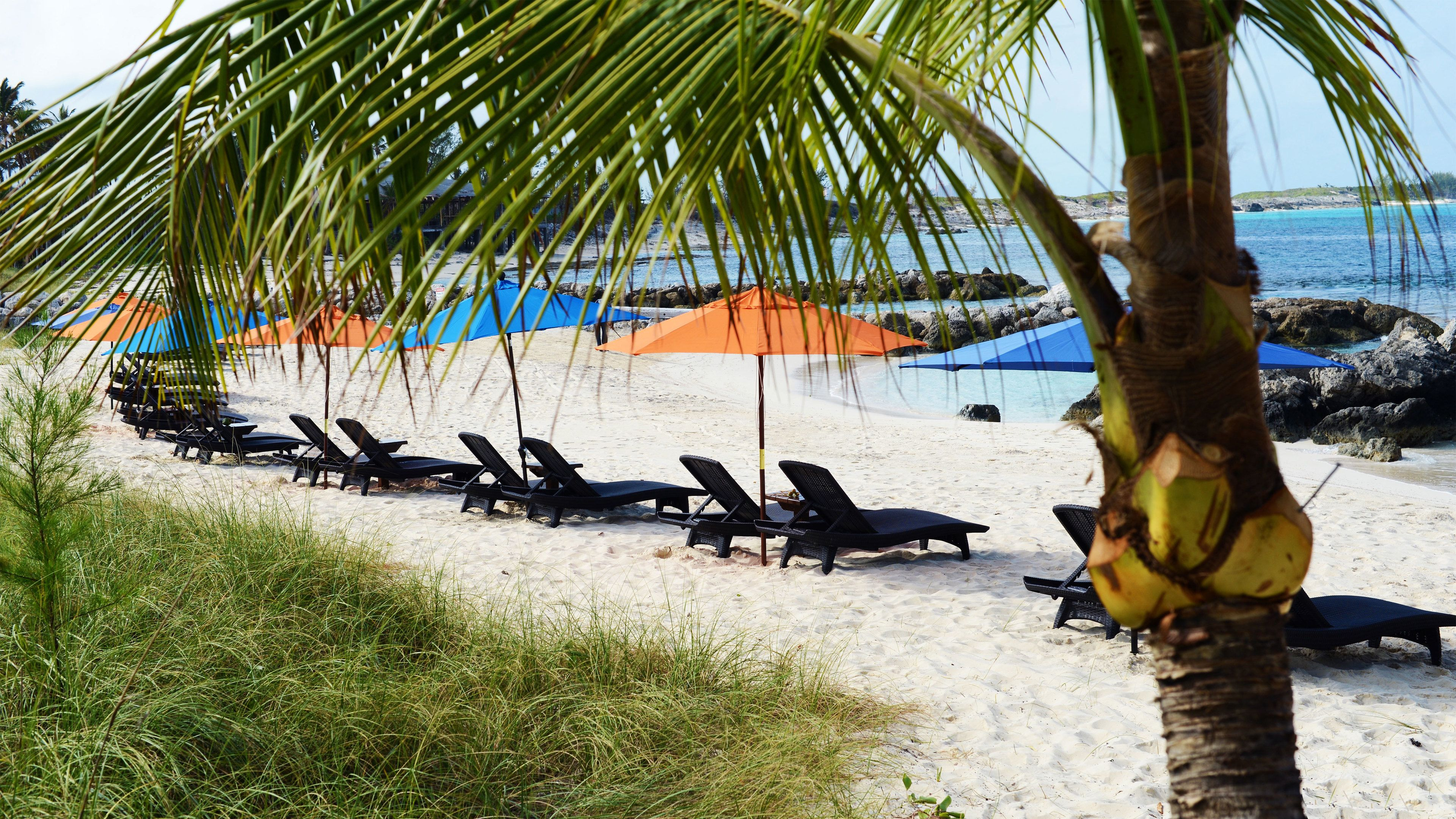 Row of chaise lounges and umbrella on a beach in Grand Bahamas