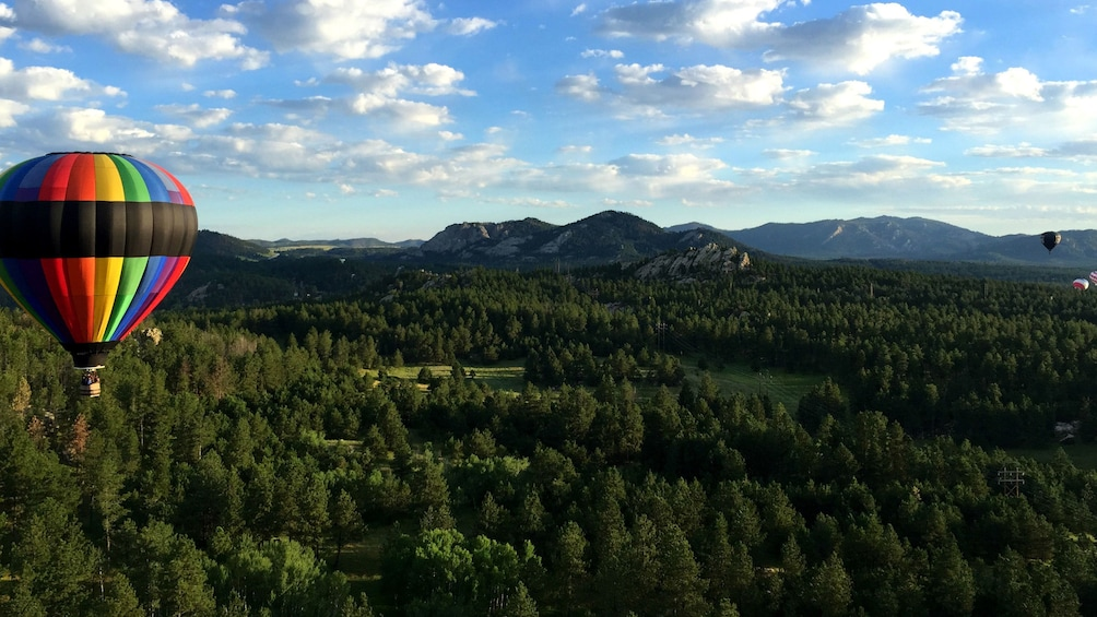 Show item 10 of 10. Hot air balloon over forest in South Dakota