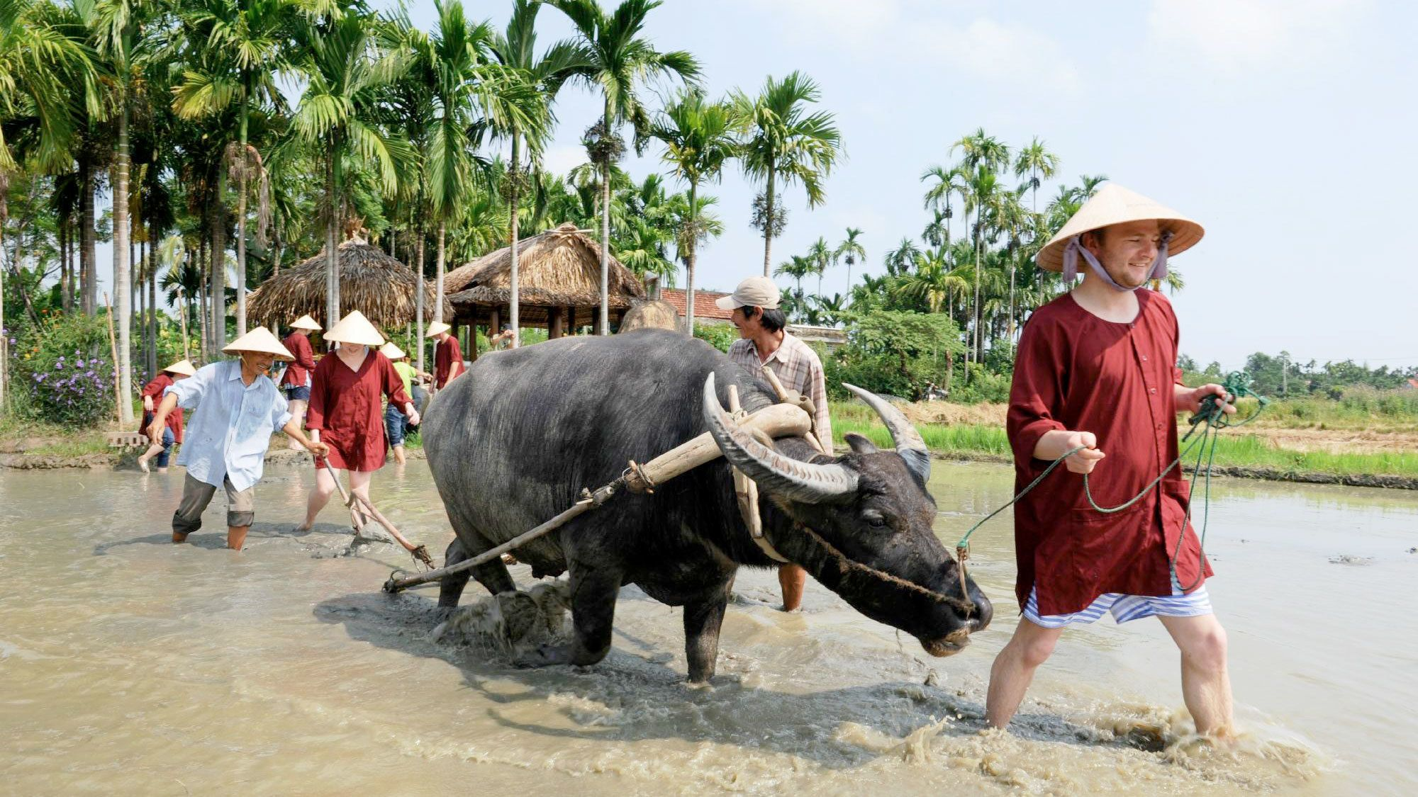 Full-Day Guided Sightseeing Tour to Ben Tre & the Mekong Delta with Lunch
