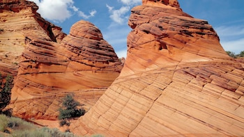 Page or Kanab departure: Coyote Buttes South Hiking w lunch