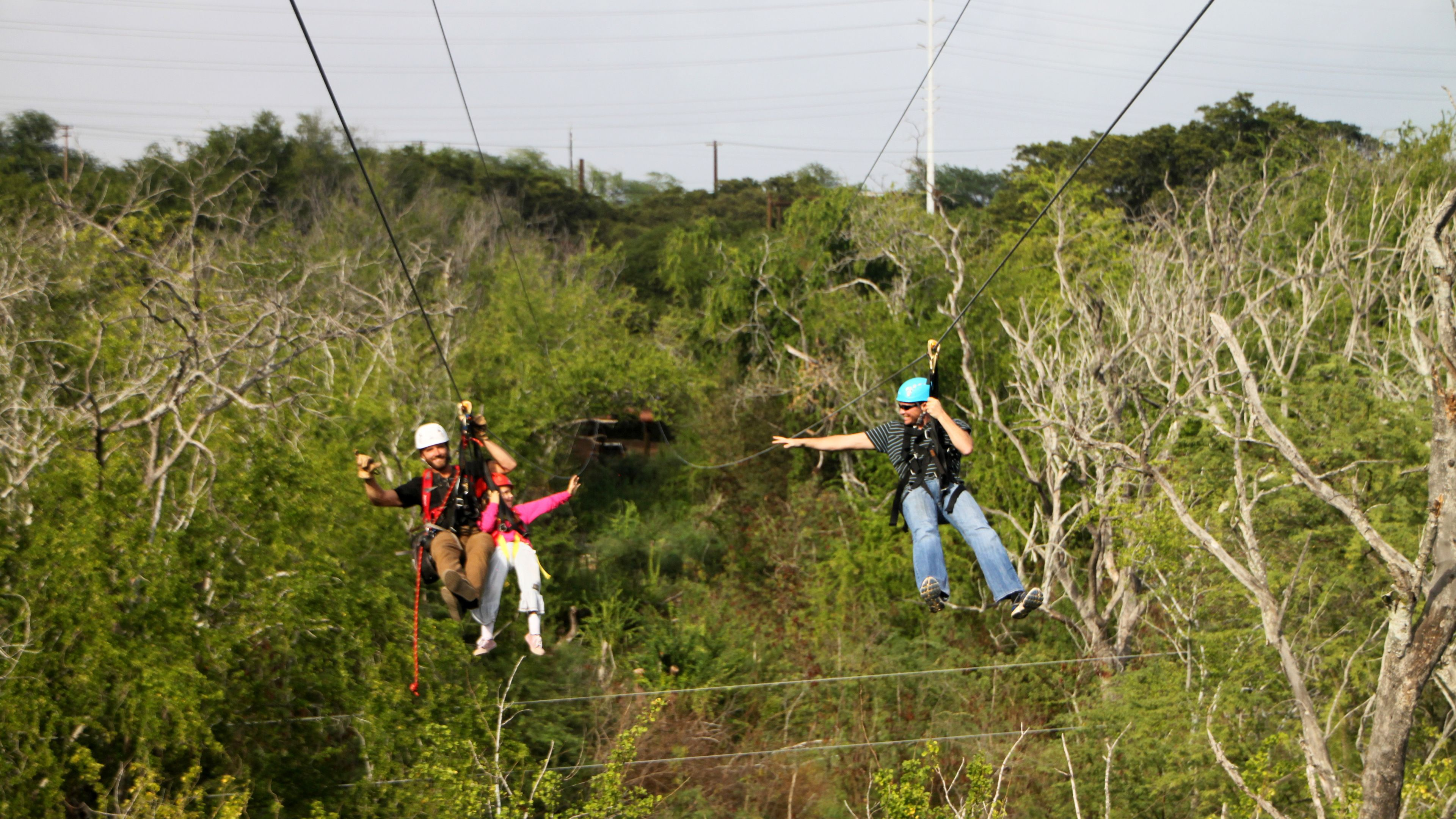 Group ziplining through the trees on Oahu