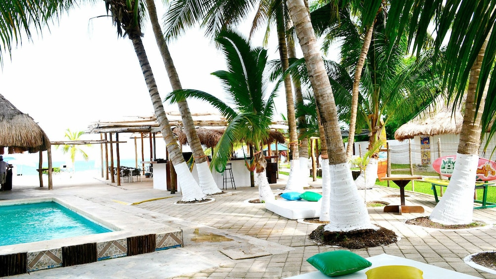 Views on the  The Joy of Chocolate and Snorkeling Tour in Cozumel