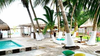 Entrada al parque Discover Mexico con snorkel y tour Joy of Chocolate