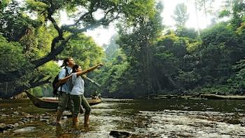 Full-Day Excursion to Taman Negara National Park