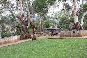 Admission to Bonorong Wildlife Sanctuary
