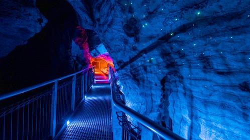 Waitomo Glowworm Cave Tour in Rotorua
