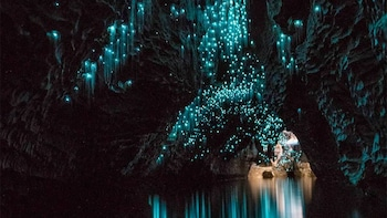 Waitomo Glowworm Caves Boat Tour