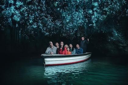 Waitomo Glowworm Caves Boat Tour
