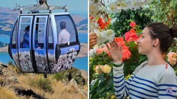 Ultieme combinatiepas: tram, kabelbaan, punteren en botanische tuinen