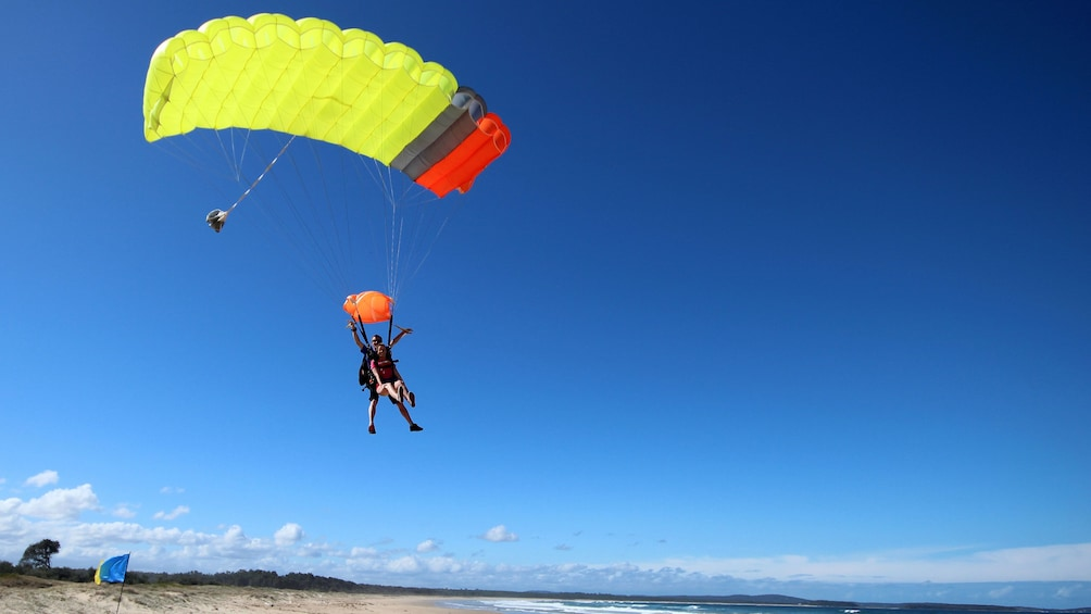 Skydivers with parachute deployed prepare for landing on beach in Batemans Bay