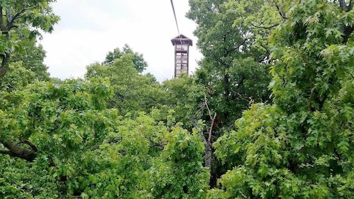 Scenic views on the ziplining adventure in Kansas City