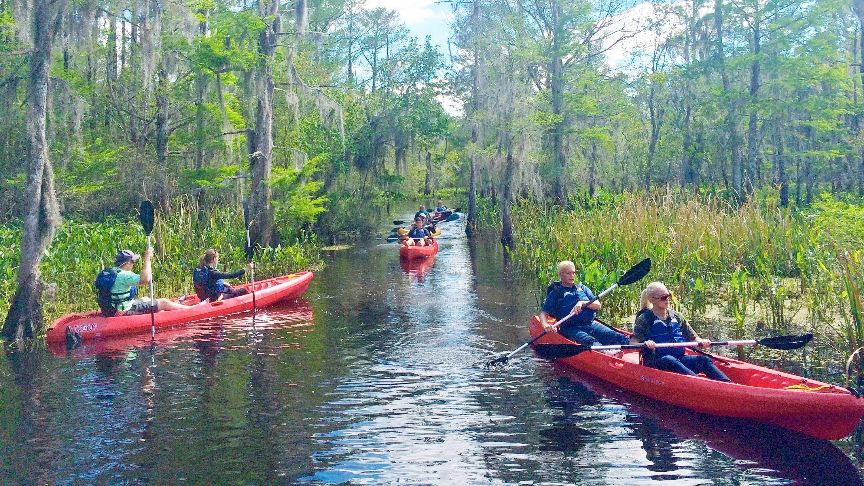 View of the scenic Manchacystic Kayak Tour