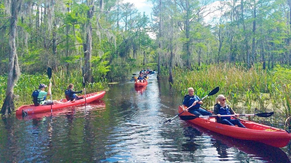 Show item 1 of 5. View of the scenic Manchacystic Kayak Tour