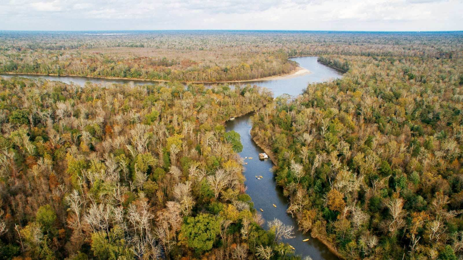 Aerial views of the Honey Island Kayak Swamp Tours