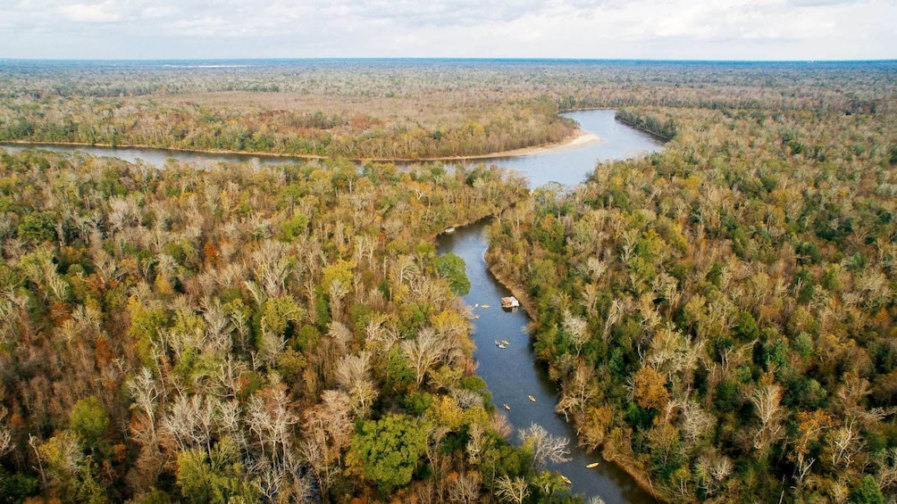 Show item 1 of 5. Aerial views of the Honey Island Kayak Swamp Tours