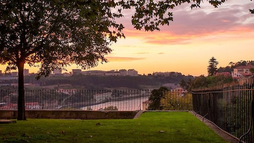 View of city at sunset from park in Porto