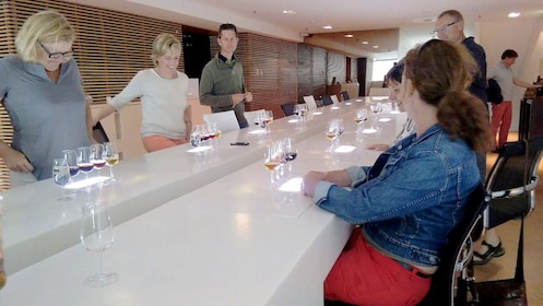 Group tasting port in Porto