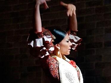 flamenco-show-and-tapas-dinner-alicante-8.jpg