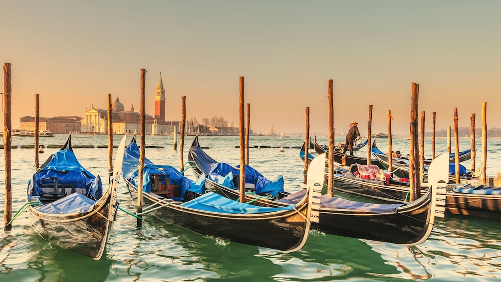 Show item 8 of 8. Gondolas moored to posts in Venice