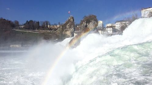 View of Rhine Falls on tour