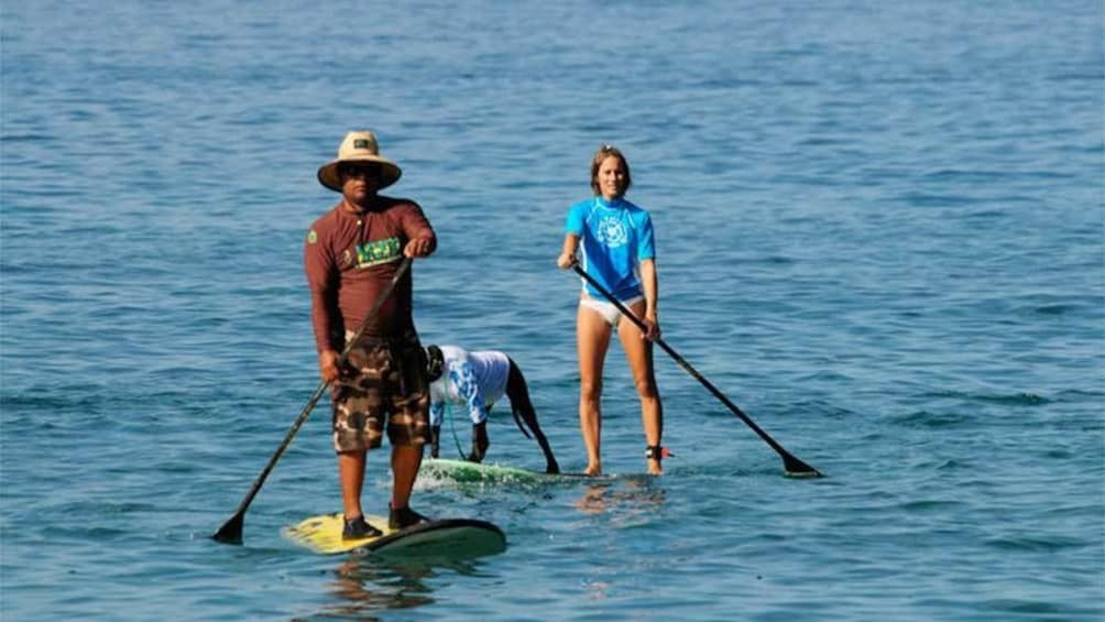 Show item 2 of 4.  Kihei Stand up paddleboarding Lesson