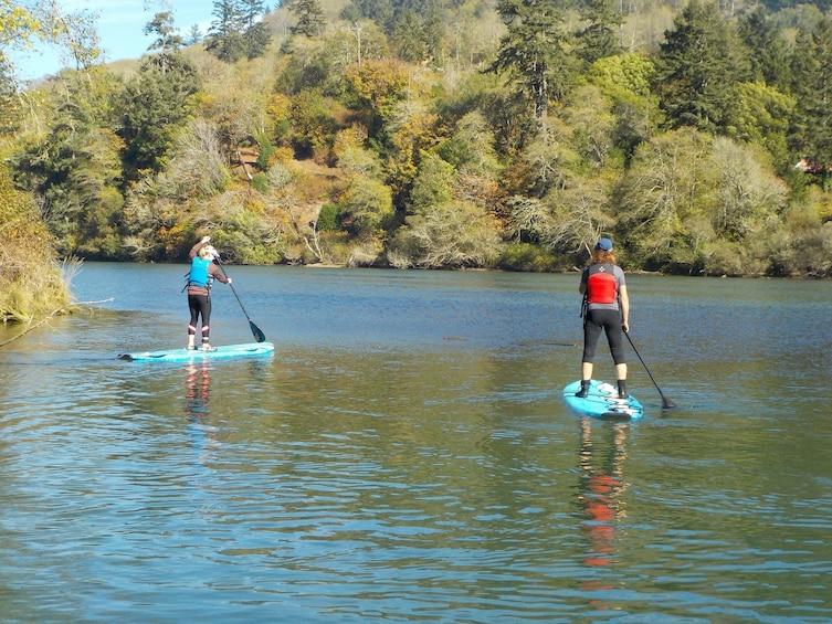 Show item 3 of 6. Chetco River Wildlife Viewing Kayak or SUP Tour