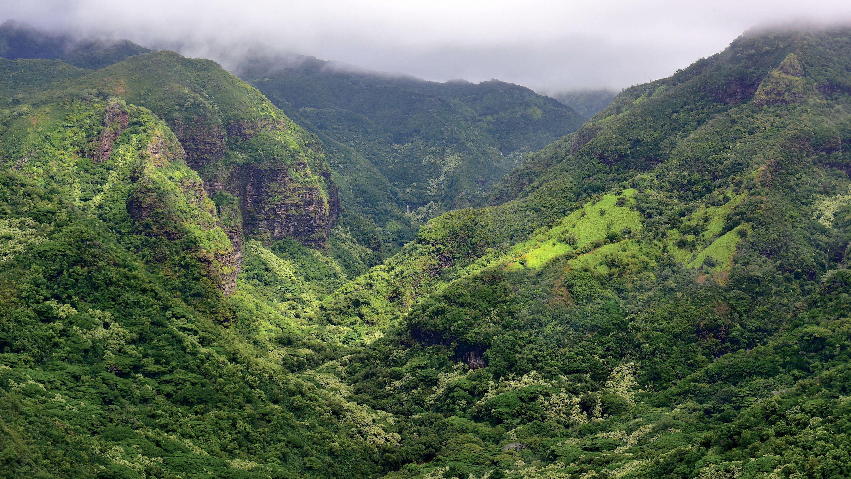 Waimea Canyon on Oahu