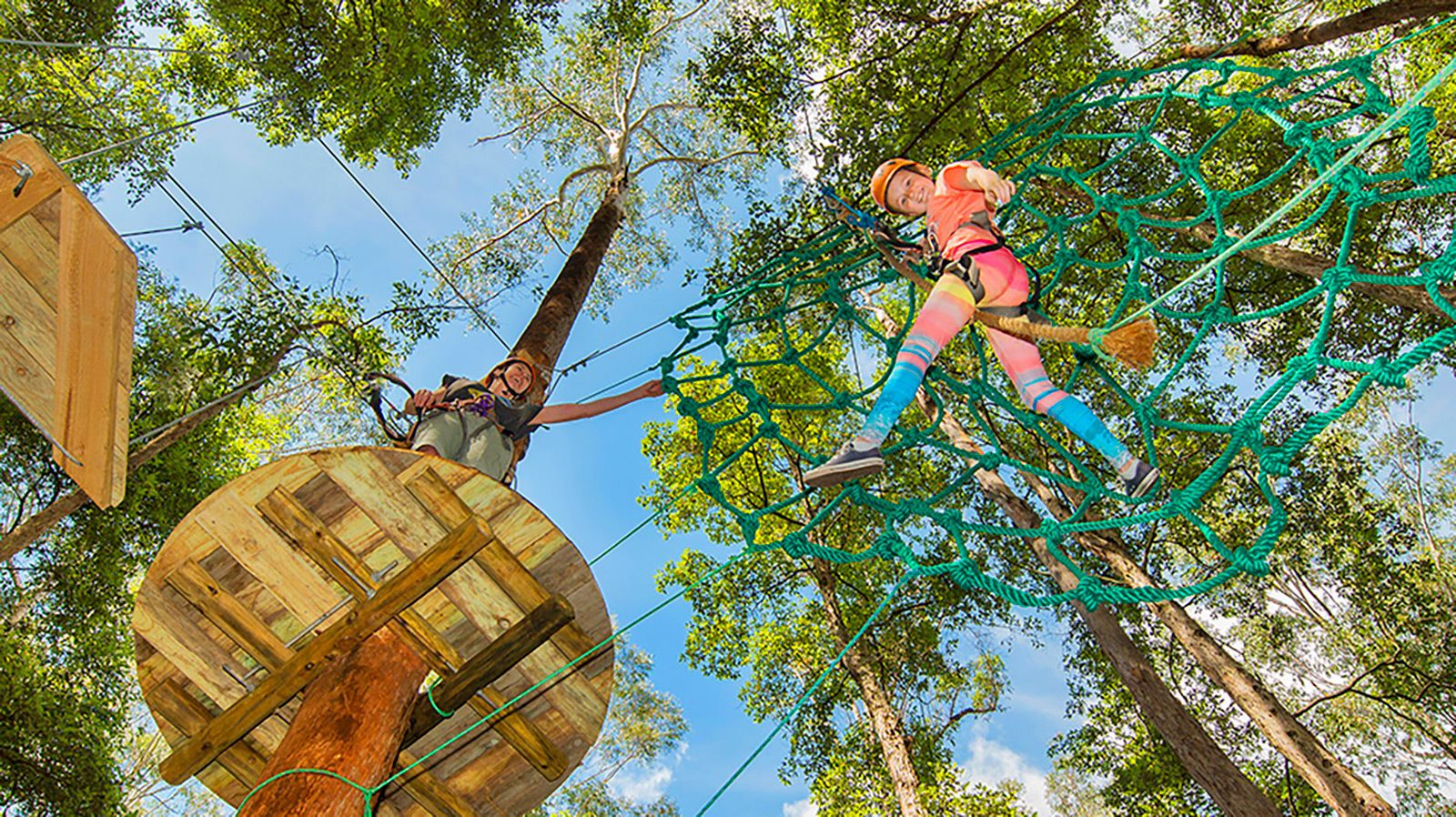 Raised platforms on a tree platform in an Adventure Park