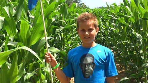 Boy in a corn maze