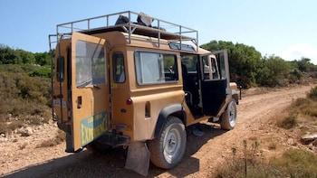 Full-Day Guided Zakynthos Jeep Safari Experience