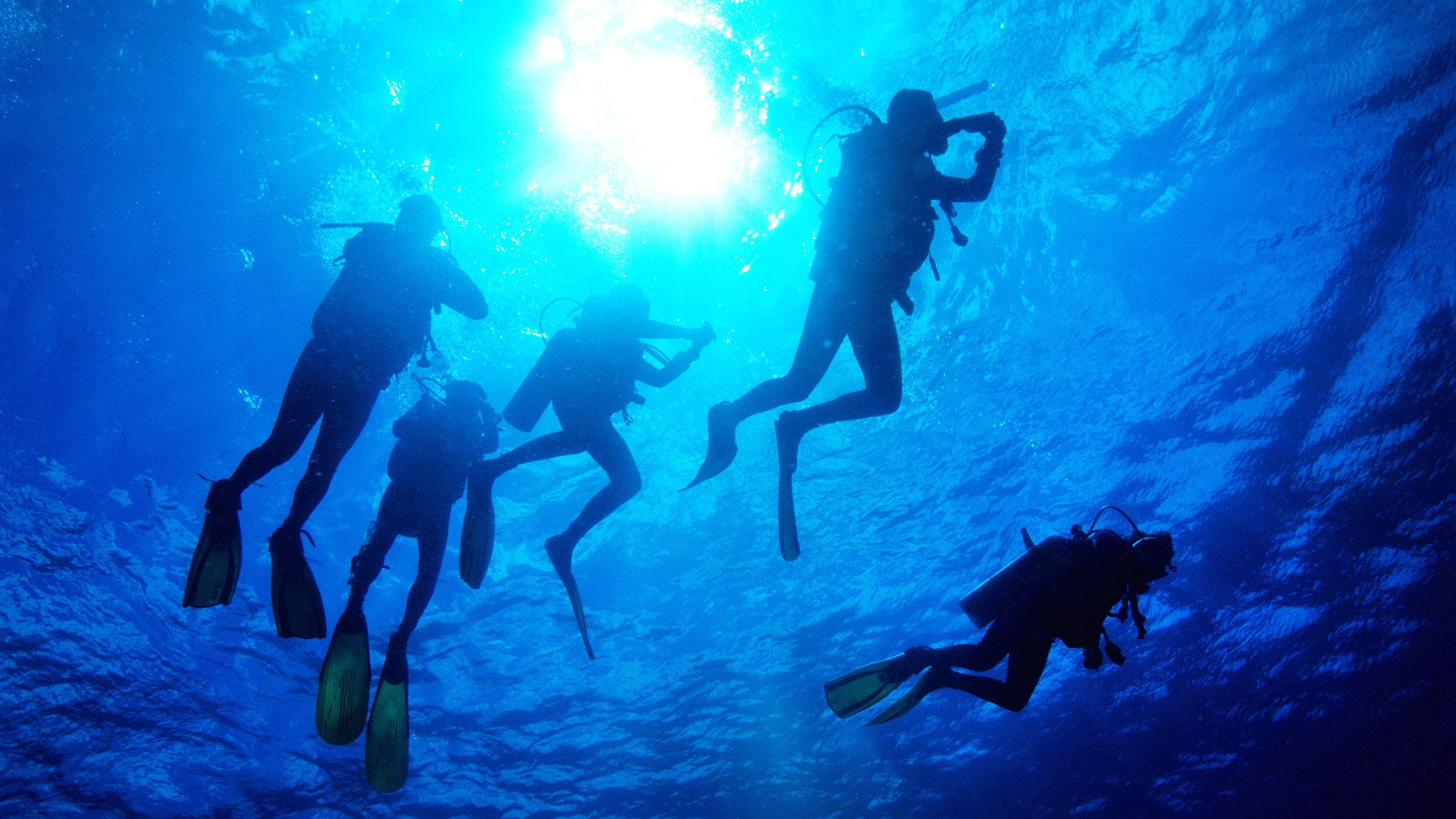 Guided Introductory Scuba Dive Experience at St. Nicholas Beach