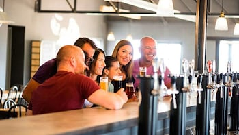 Private Craft Beer Brewery Tour