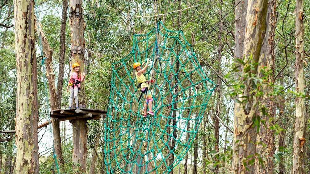 Show item 2 of 5. Girls cross giant rope web at TreeTops adventure park in Adelaide