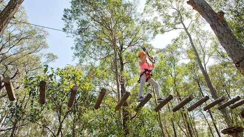 Young girl walks across rope bridge in TreeTops adventure park in Adelaide