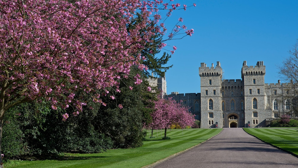 Show item 2 of 5. Windsor Castle and grounds in England