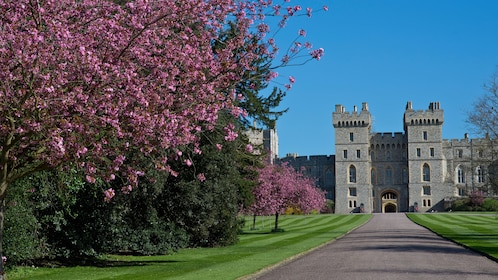 Windsor Castle and grounds in England