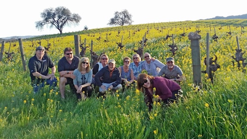 Sunset view of a group on the Sonoma Valley Small Group Tour