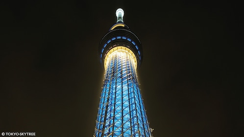 Skytree at night from the ground in Tokyo