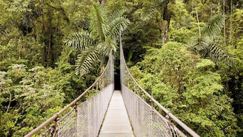 Full-Day Arenal Hanging Bridges, La Fortuna Waterfall & Volcano Hike