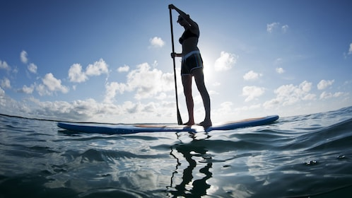 Woman on a stand-up paddle board in Miami